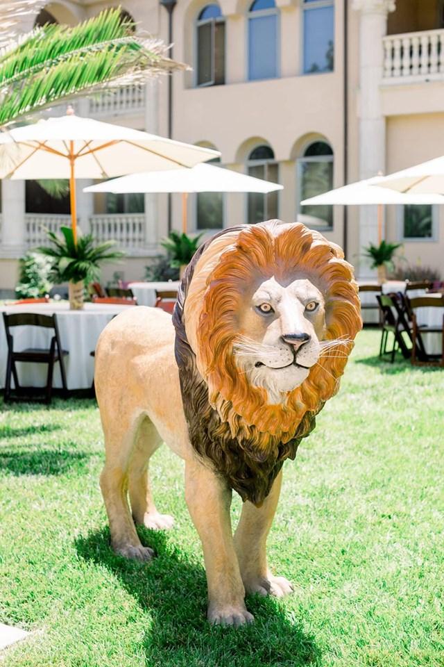 Accesorios para fiesta de safari